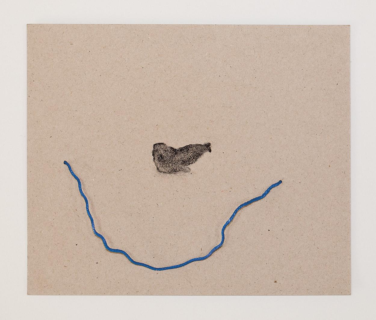 Monachus monachus II    / Foca Monge  Charcoal drawing and plastic found at the beach. 28 x 23,5 cm.