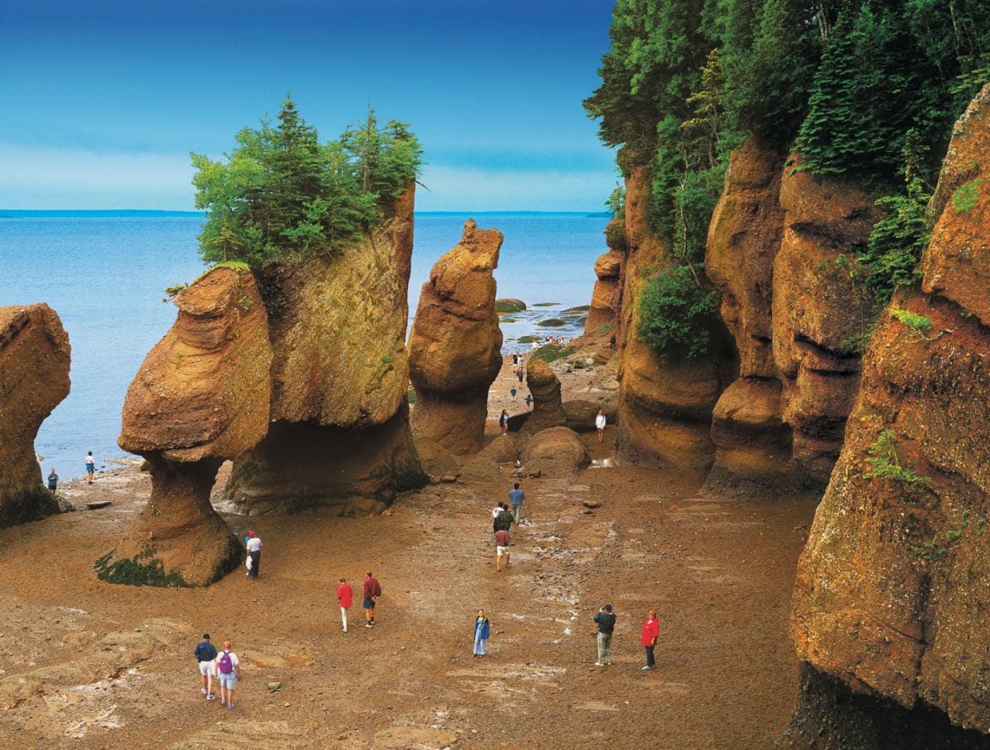 hopewell-rocks-tidal-discovery-saint-john-nb-canada-1.jpg