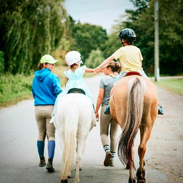 horse-ride_orig-2.png