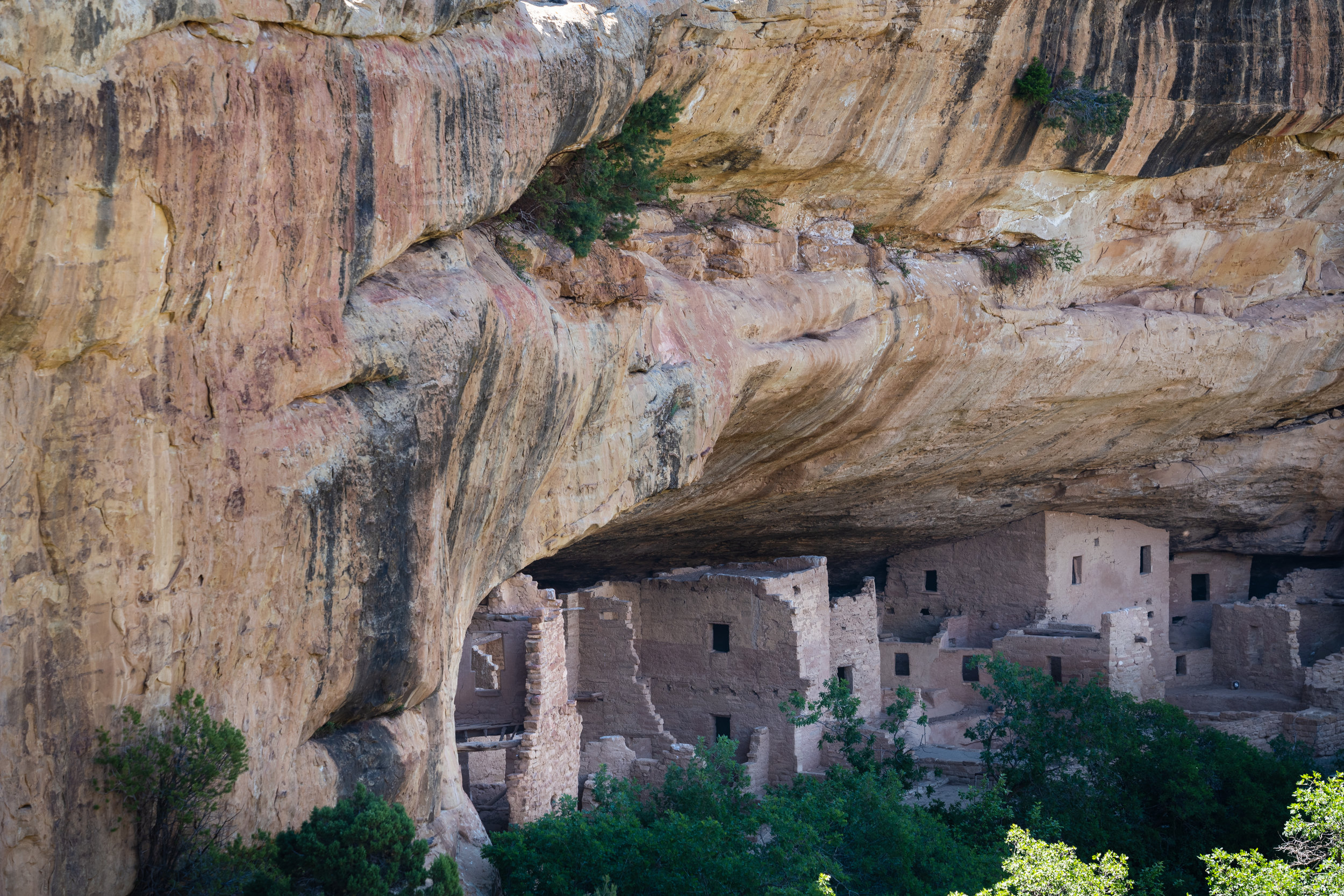 mesa verde national park - A half-day guide for first-time visitors to Mesa Verde National Park, an archeological wonder that protects close to 5,000 Ancestral Pueblo sites, including famous cliff dwellings.