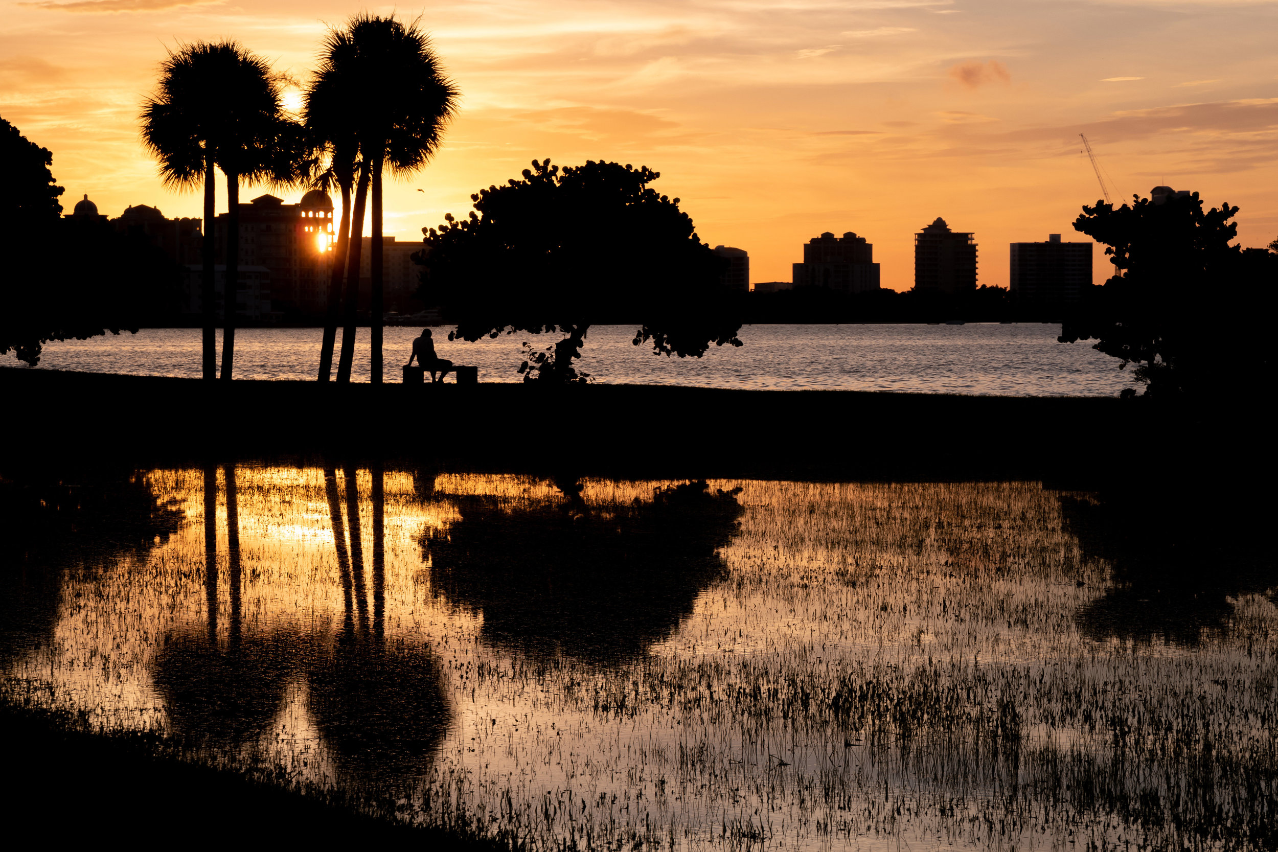 seeing Sarasota - How do you see a place anew, or can you, after you've laid eyes on it so many times before? Explore our strategies for playing tourist in a beloved destination you've frequented time and again.