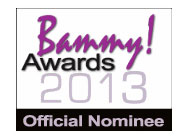 Bammy Awards 2013