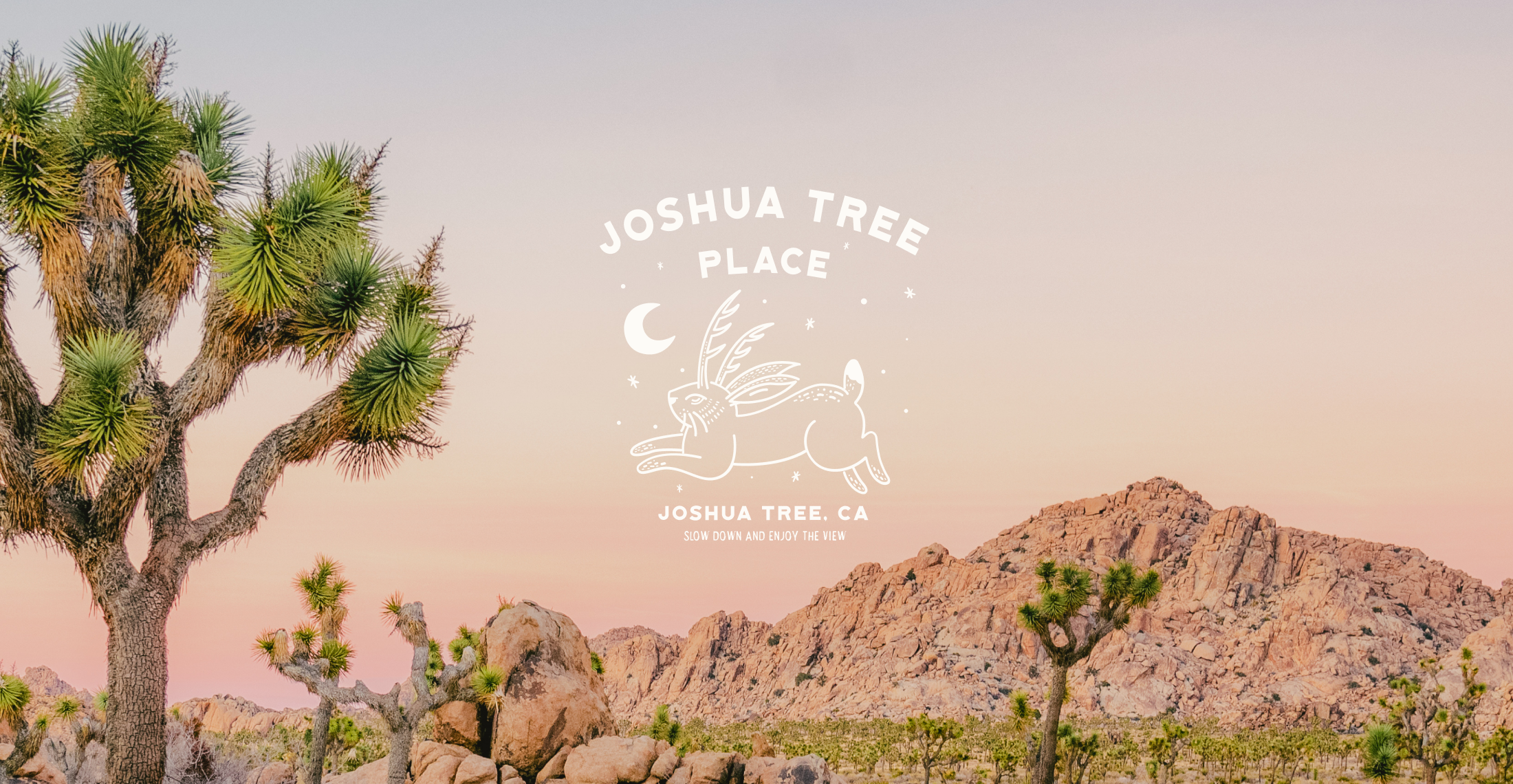 Joshua Tree hero - SQ.png