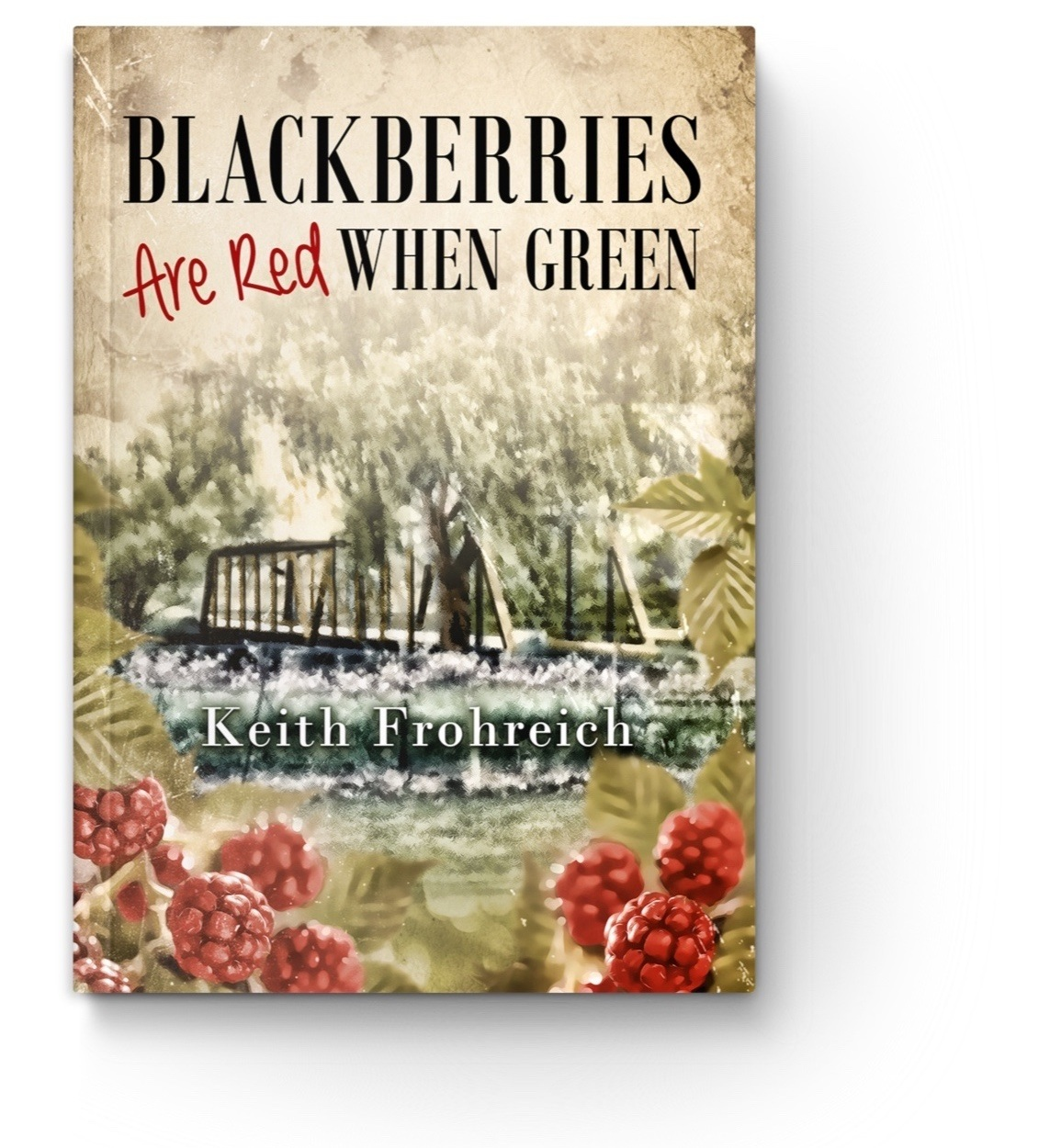 Blackberries Are Red When Green - Over the three years leading up to the murders of 1960, young Kurt Baumann's world had been rocked by the loss of his dad, his best friend, and his dog, leading him to doubt the existence of God. A year after losing his father, a retired Pullman Porter moves into a small shack across the river from the small Baumann farm. Change colors the air. Kurt now has a new friend who disrupts and enlivened Kurt's life with tales while lolling the day away bass fishing down the riverbank. In less than a month, two murders traumatize the sleepy village of Adams Creek, Indiana.
