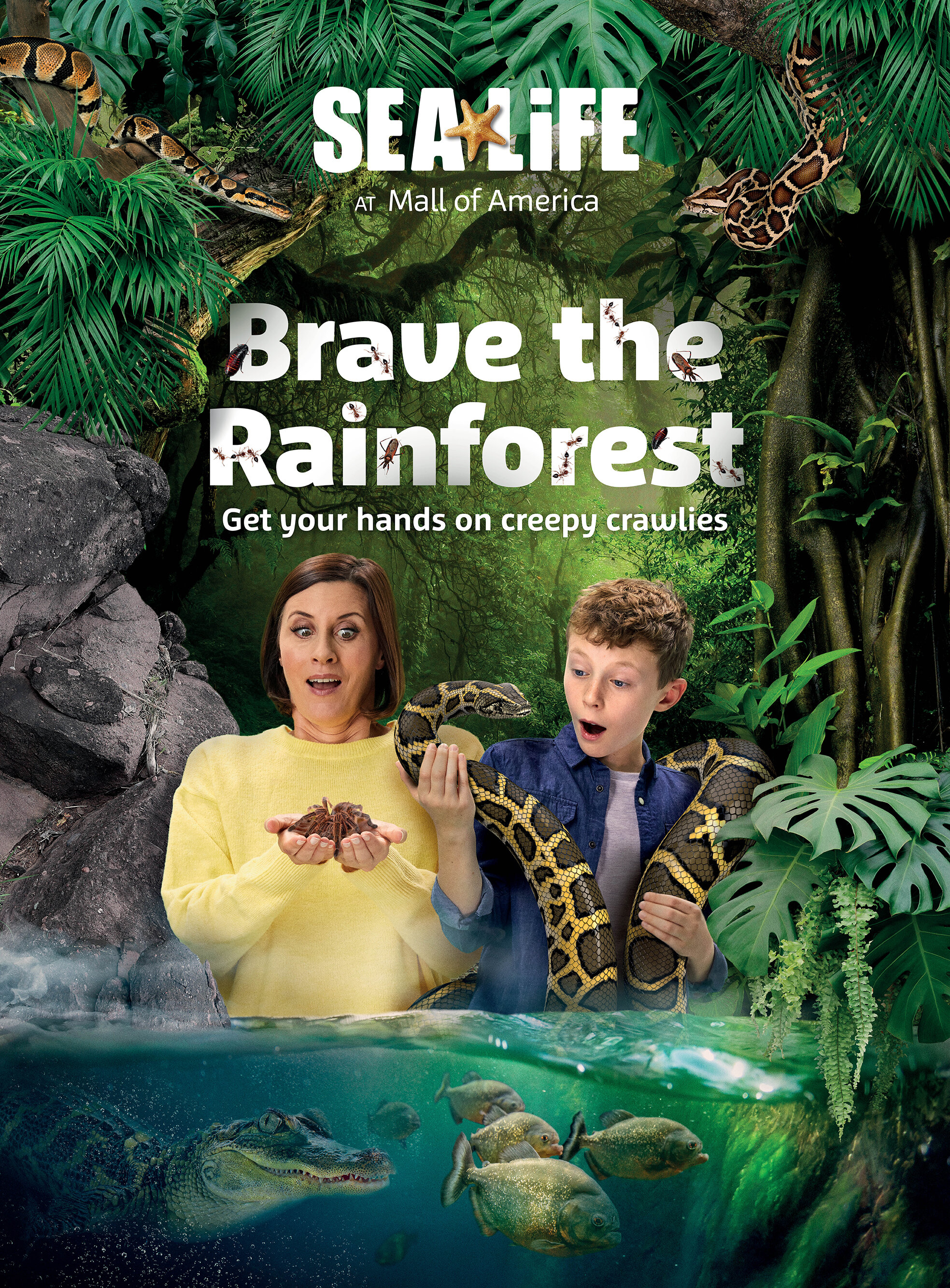 Rainforest environment was created with a series of stock photography. A CGI python was rendered and wrapped around the model.