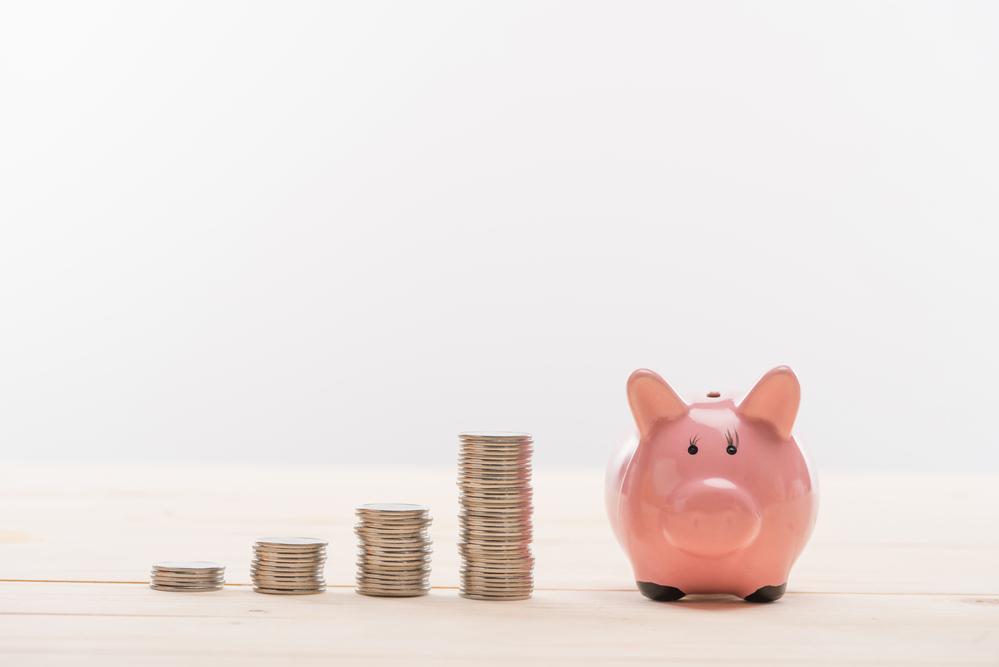 Small_Budget_piggybank.jpg