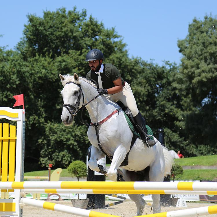 kuwait equestrian portugal leadequestrian leadwealth.jpg