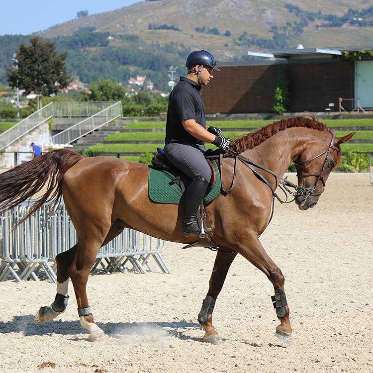 CANADA equestrian portugal leadequestrian leadwealth.psd.jpg