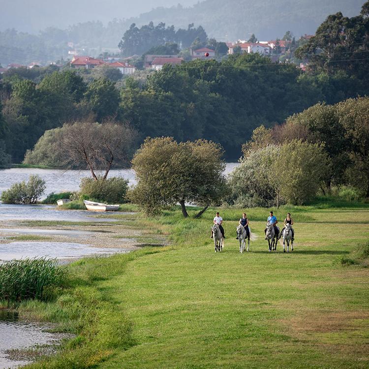 ponte de lima equestrian portugal leadequestrian leadwealth.jpg