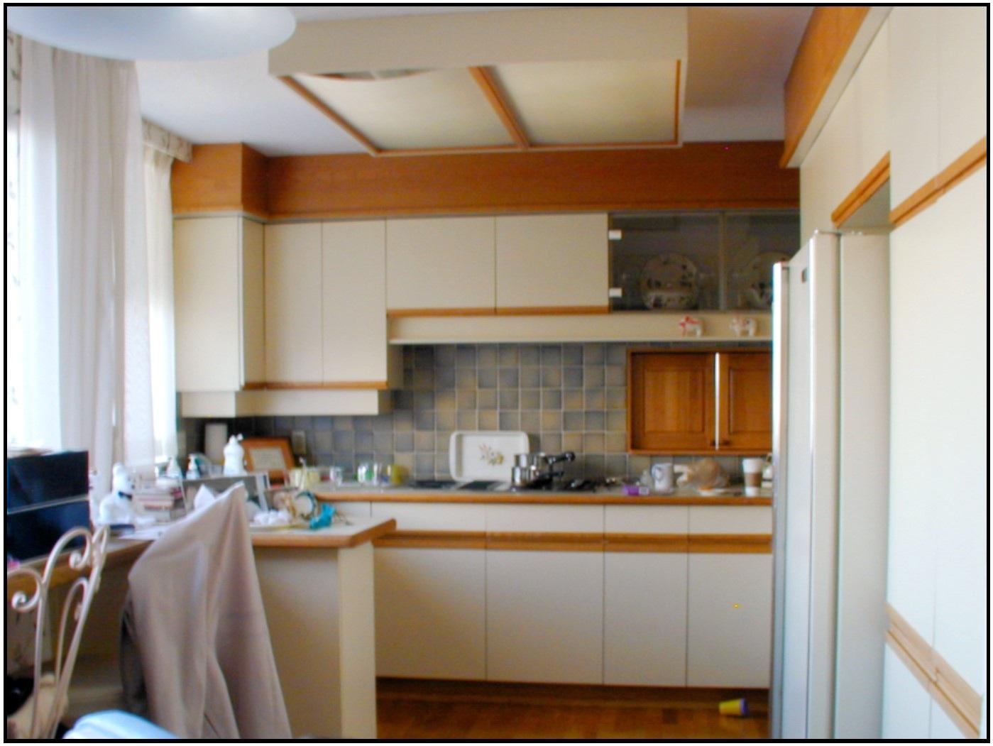 Kitchen existing.jpg