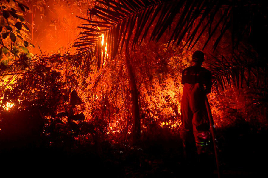 Firefighters battling a forest fire near Pekanbaru, Riau. - Indonesia is battling forest fires causing toxic haze across Southeast Asia -AFP