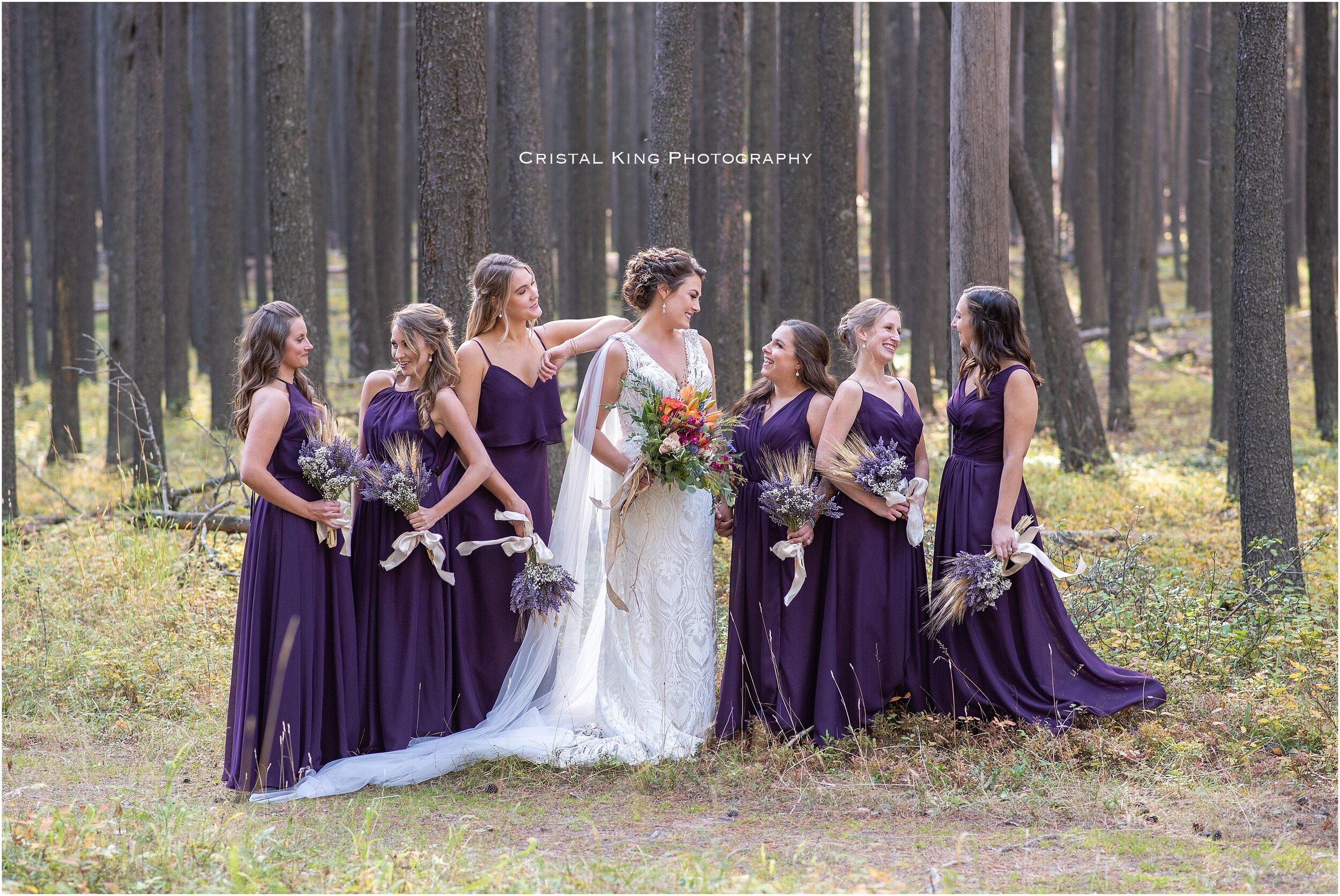 Sarah & Shaun's Wedding-73.jpg