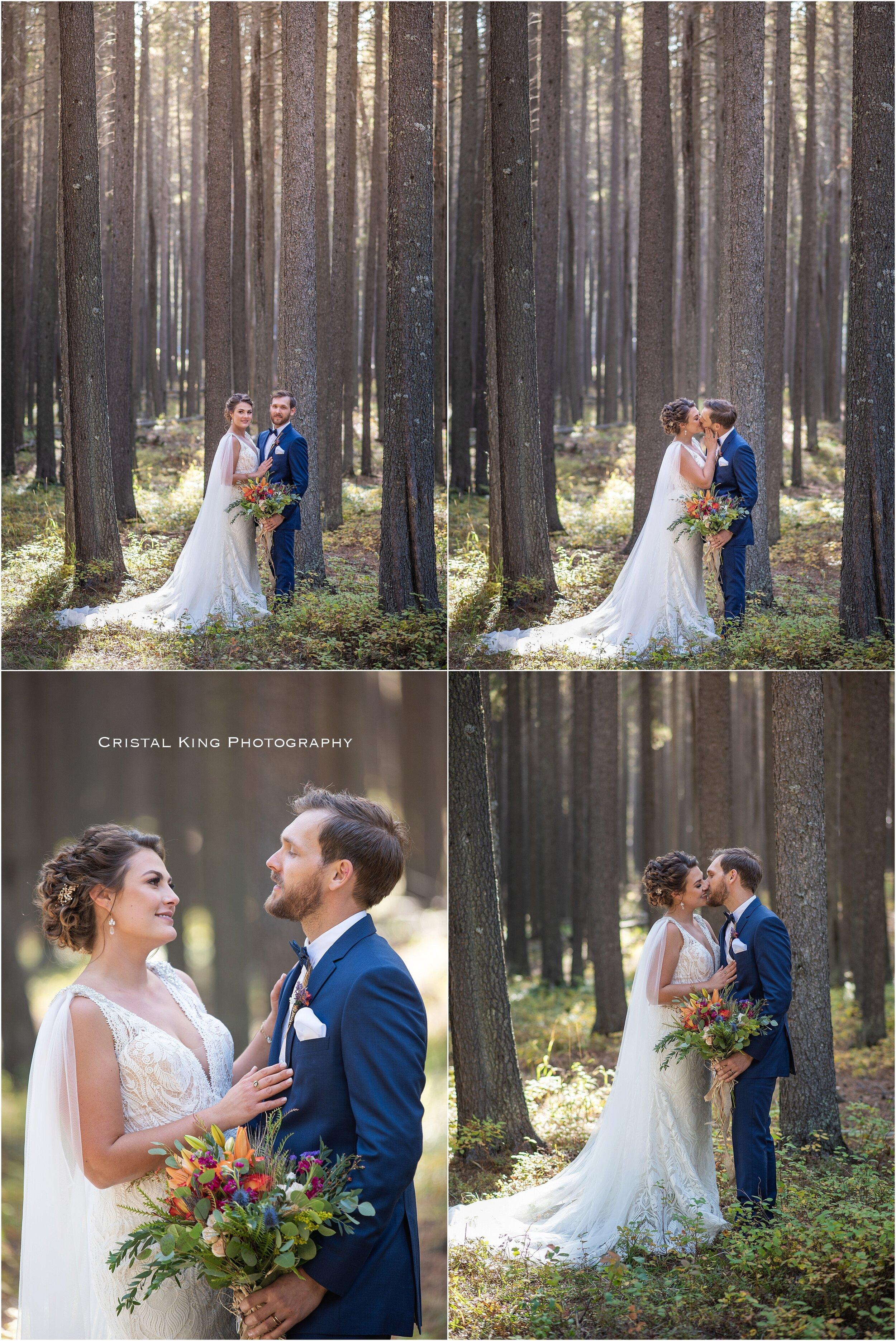 Sarah & Shaun's Wedding-91.jpg