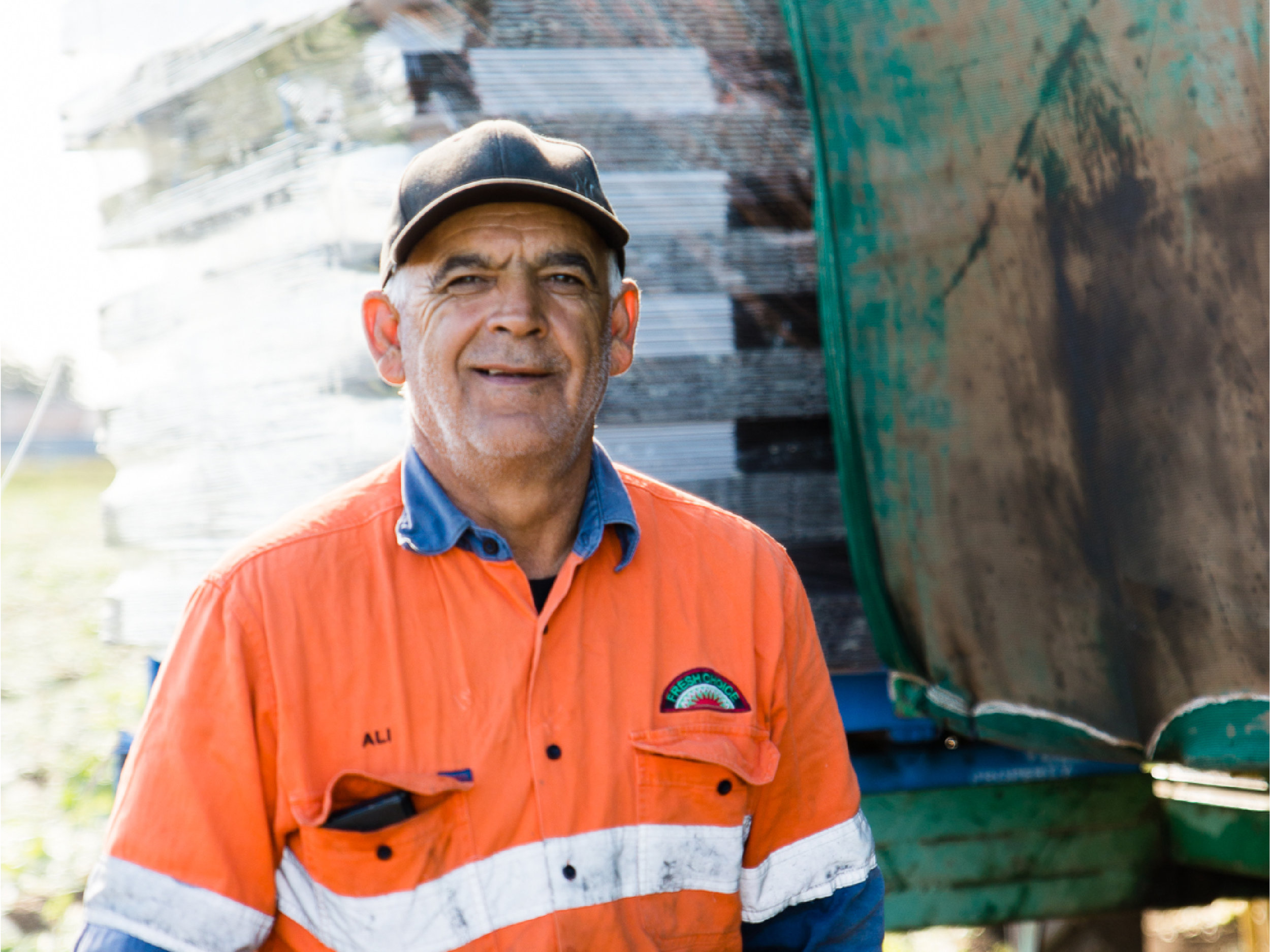 Ali manages his harvesting crew and happens to be one of our oldest employees, not because of his age but because of how long he has been working with us! Ali has been a valued employee for Koala Farms from 1990! Ali ensures we cut, pack and send some of the freshest iceberg lettuce around Australia.
