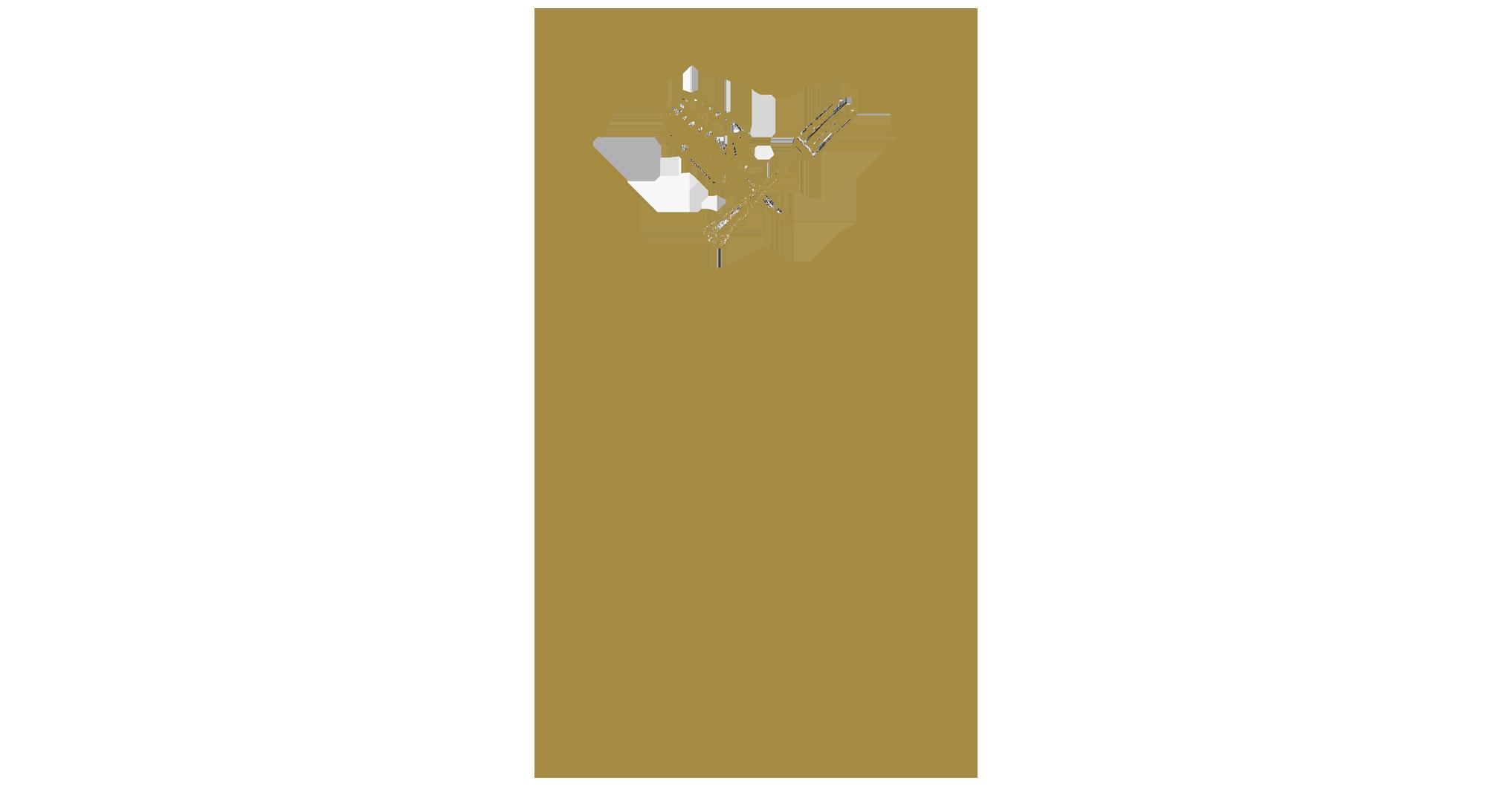 BAK.png
