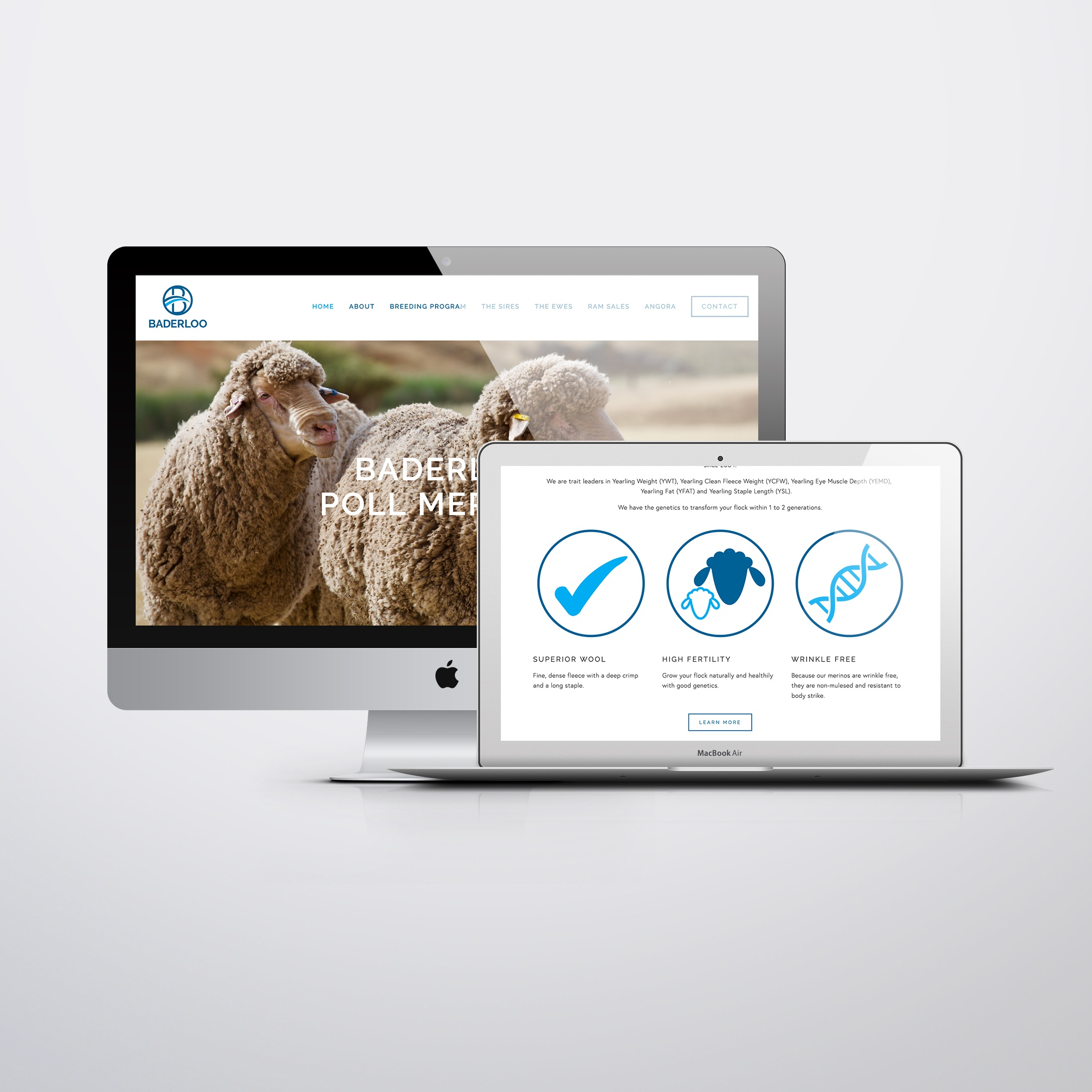 BADERLOO MERINOS - Web design & build in Squarespace, SEO, web contentAgency: Faction Co.