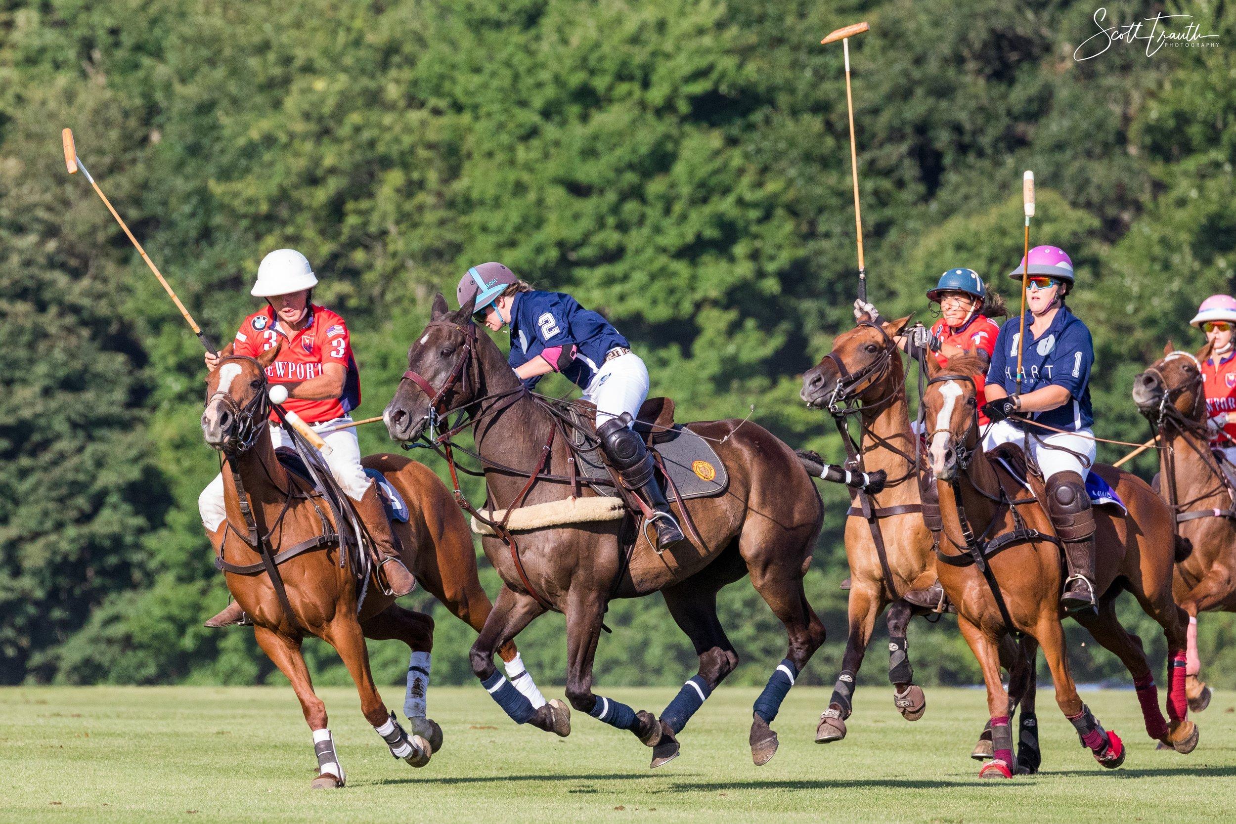 Newport International Polo - 2019