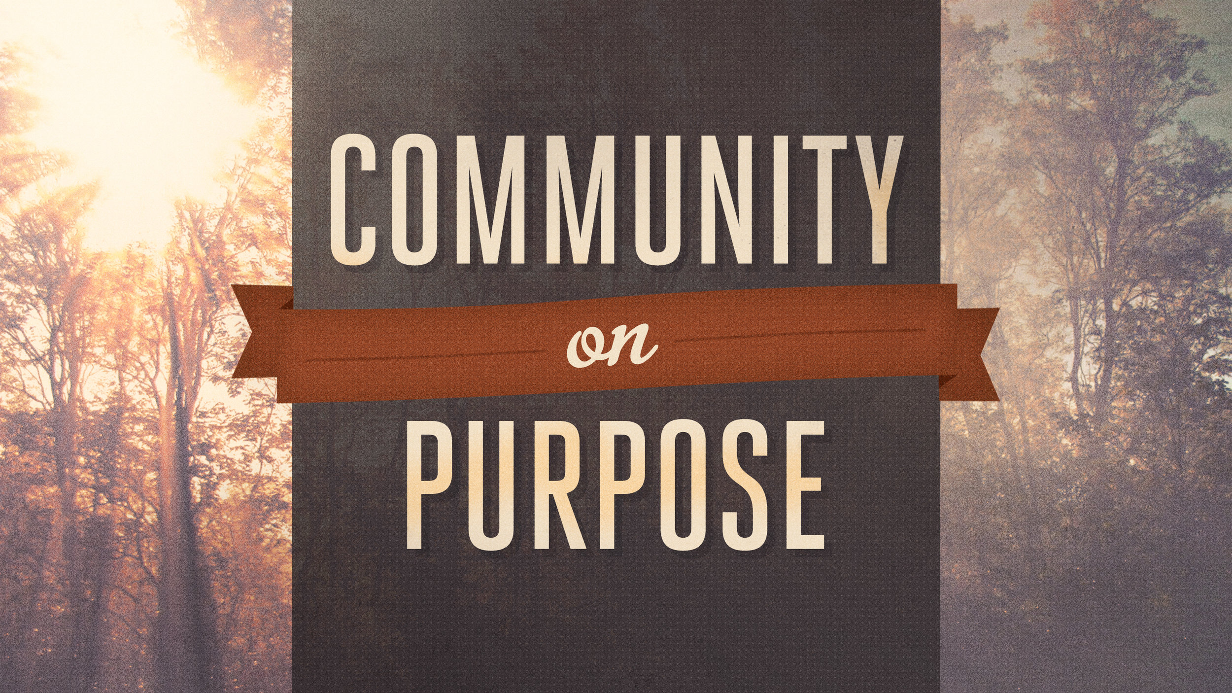 Community on Purpose