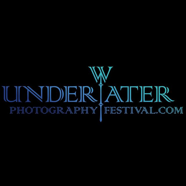 Our website is online, we'll soon update it with other news and the list of our Ambassadors... stay tuned! #underwater #underwaterpic #underwaterphotography #imageinprogressmagazine #imageinprogress #underwater