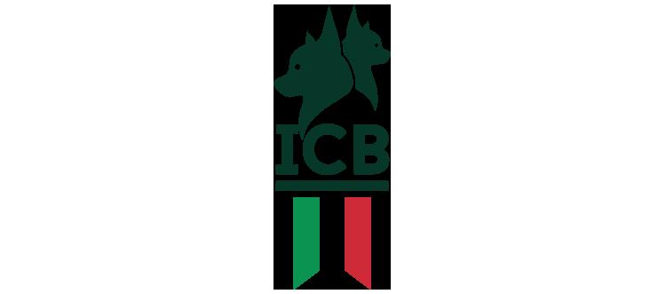 ITALIAN CREATIVE BOOK