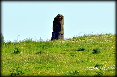 Castletimon Heritage_15.jpg