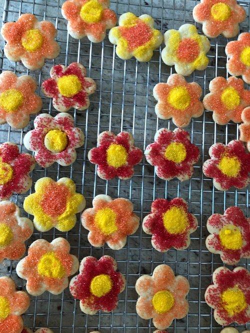 Julie Marshall Spring Book Club Cookies