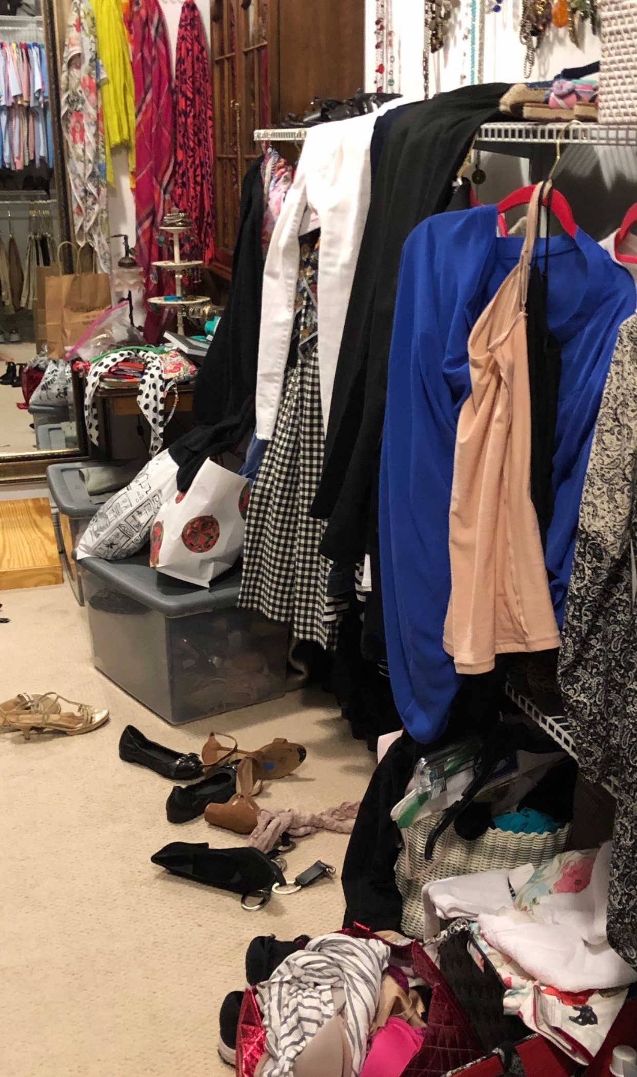 Dr Julie Marshall - Closet Cleanup 3.jpeg