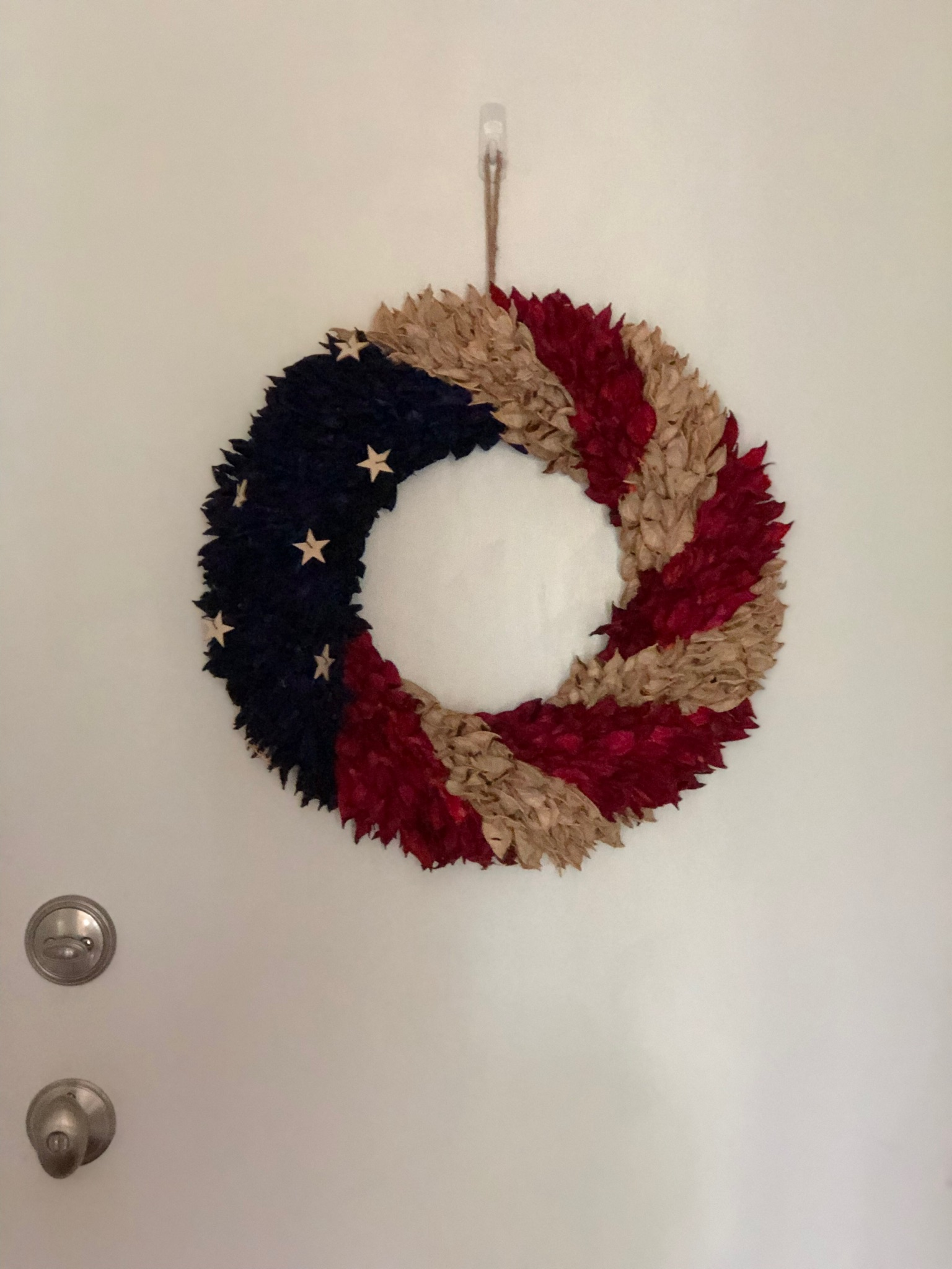 Red, White And Blue - Dr. Julie Marshall 6.jpeg