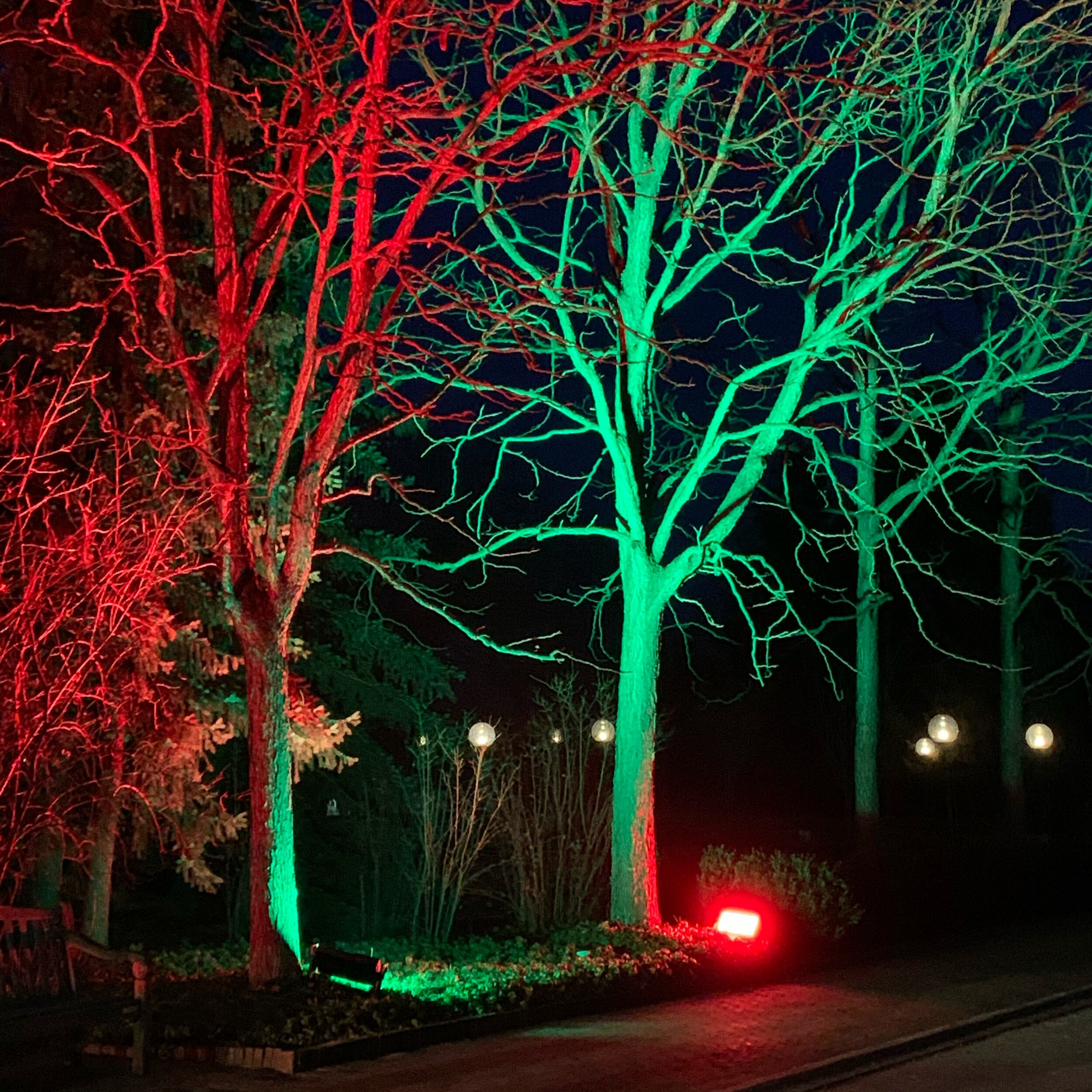 The Chicago Botanic Garden Christmas Lightscape Show