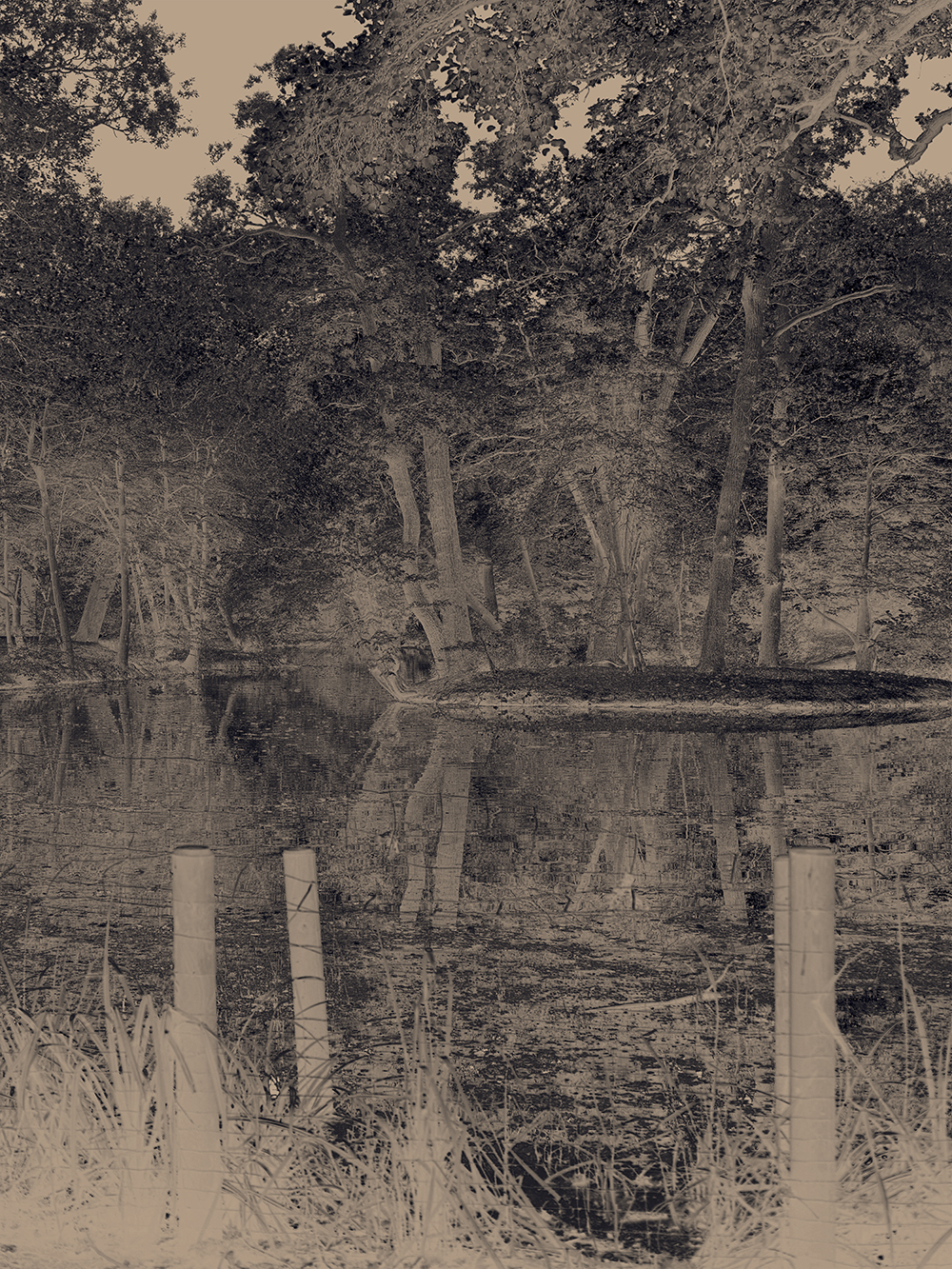 Lake's End (Charcoal)  2018  Archival pigment print; 105 x 140 cm  Edition of 5
