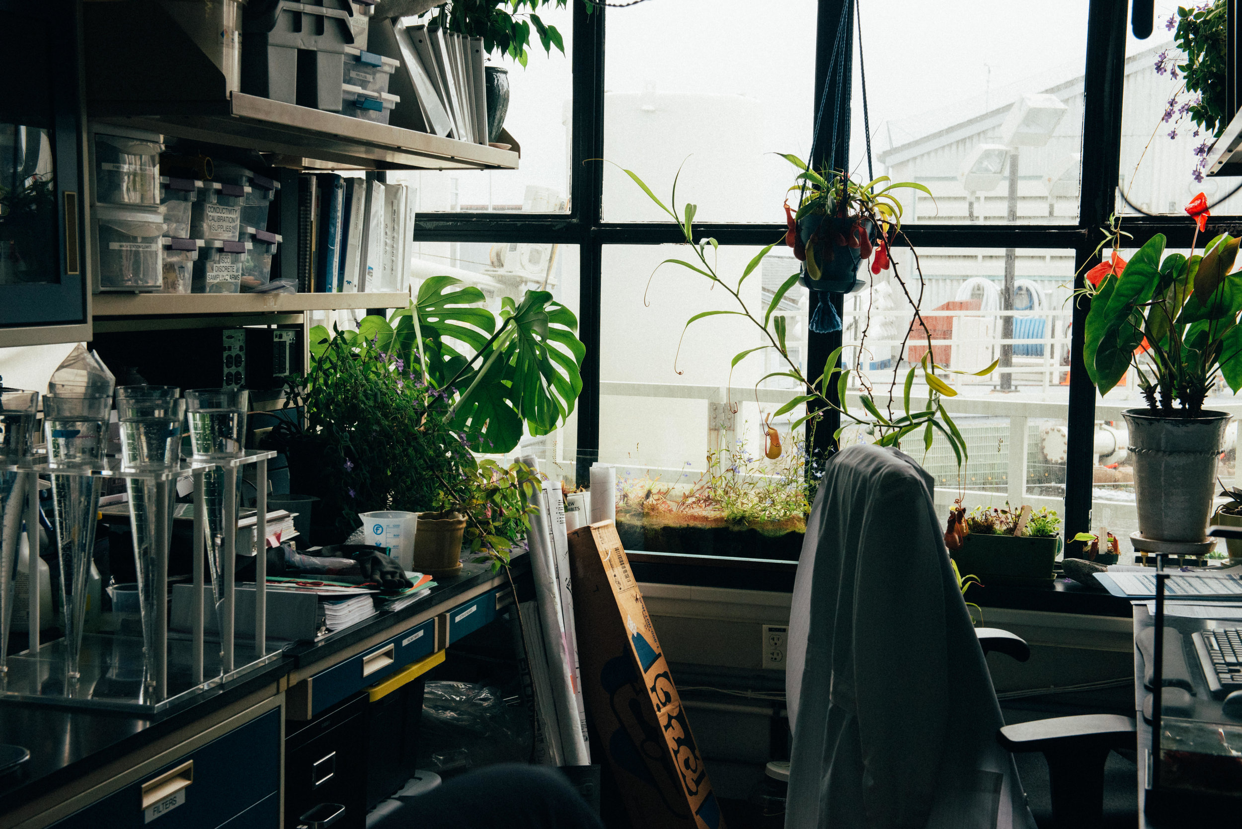 office with plants and scientific equipment.jpg
