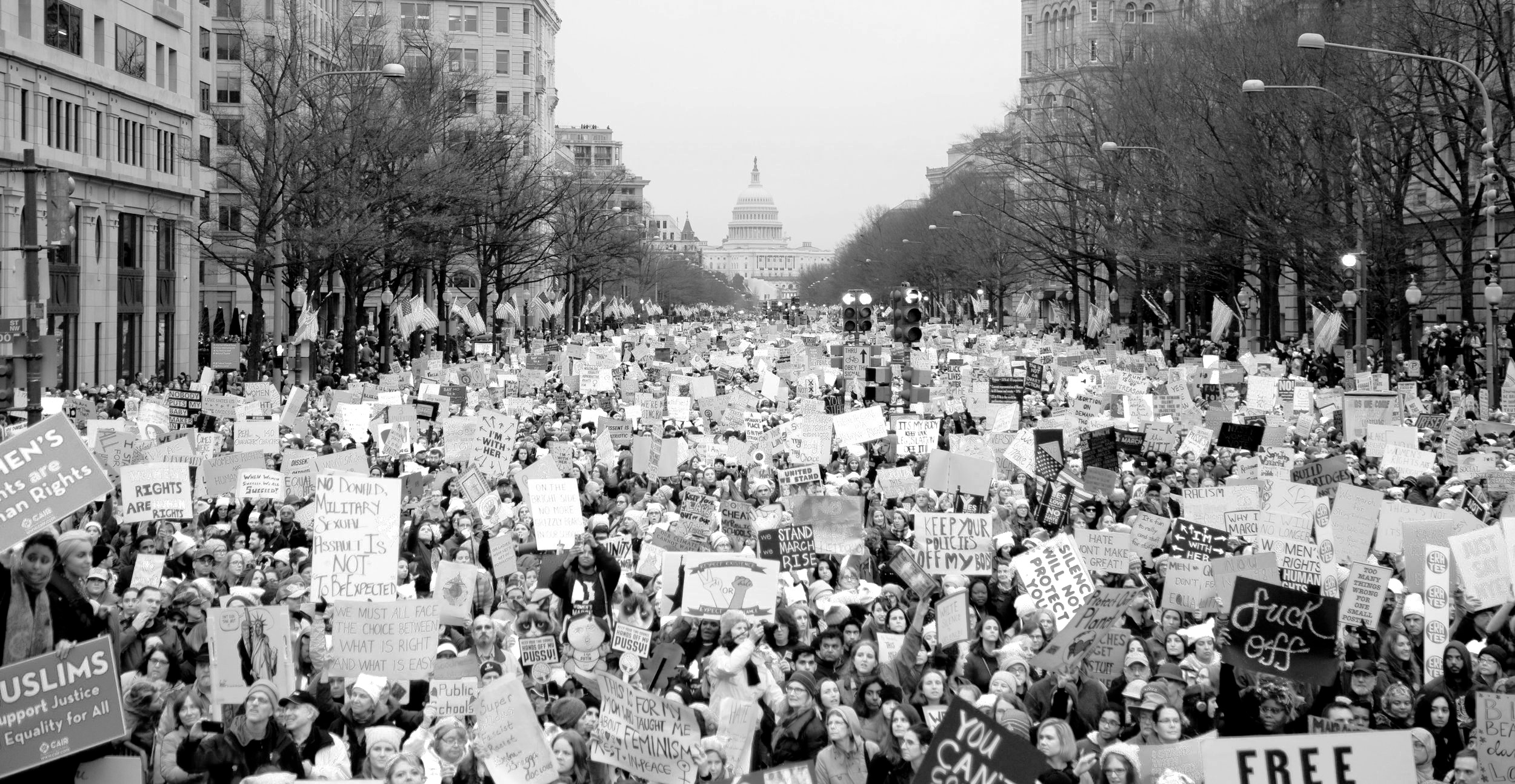 image of the women's march on Washington