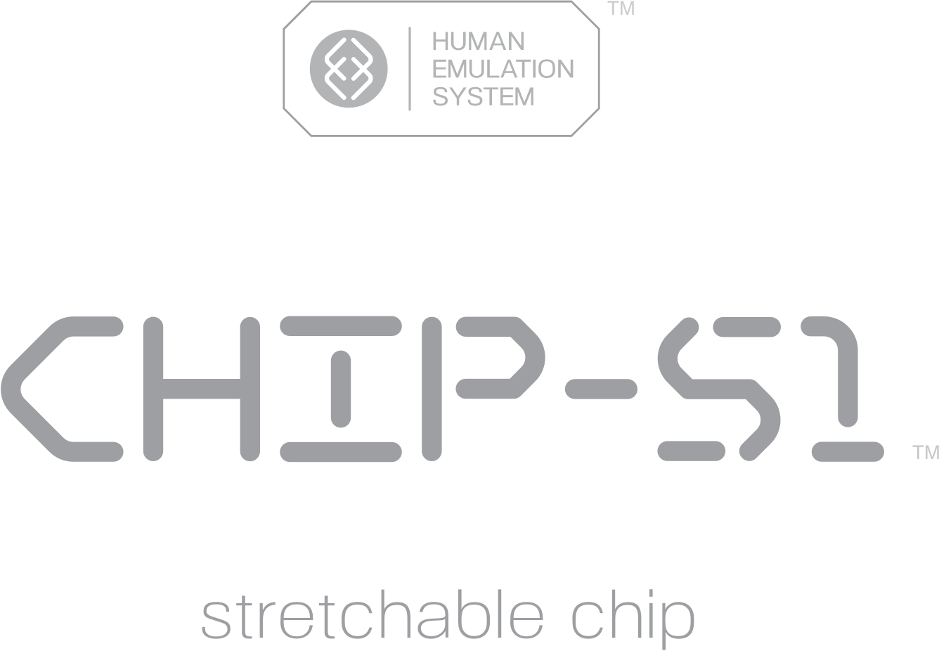 01_Official-Branding-Gray_Chip-S1-1.png