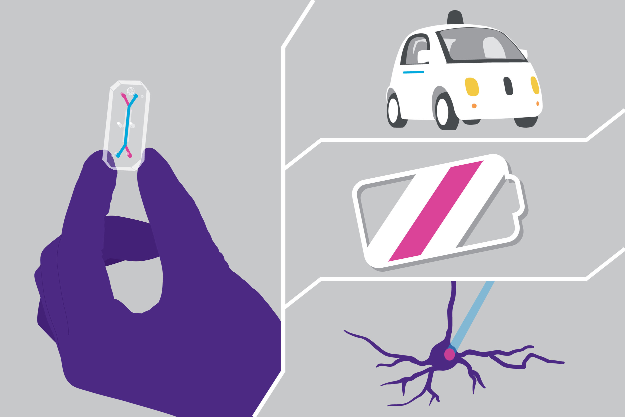 Our Organ-Chips were named a top 10 technology of 2016, along with self-driving cars, next generation batteries, and optogenetics.