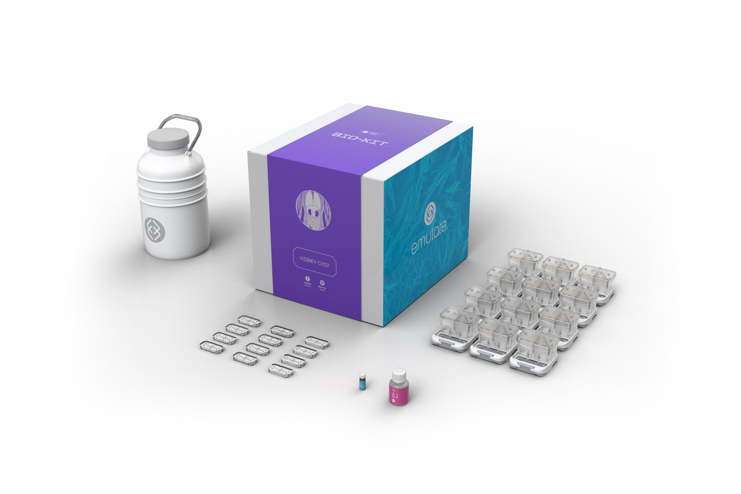 Kidney_Bio-Kit_2019 (1).png