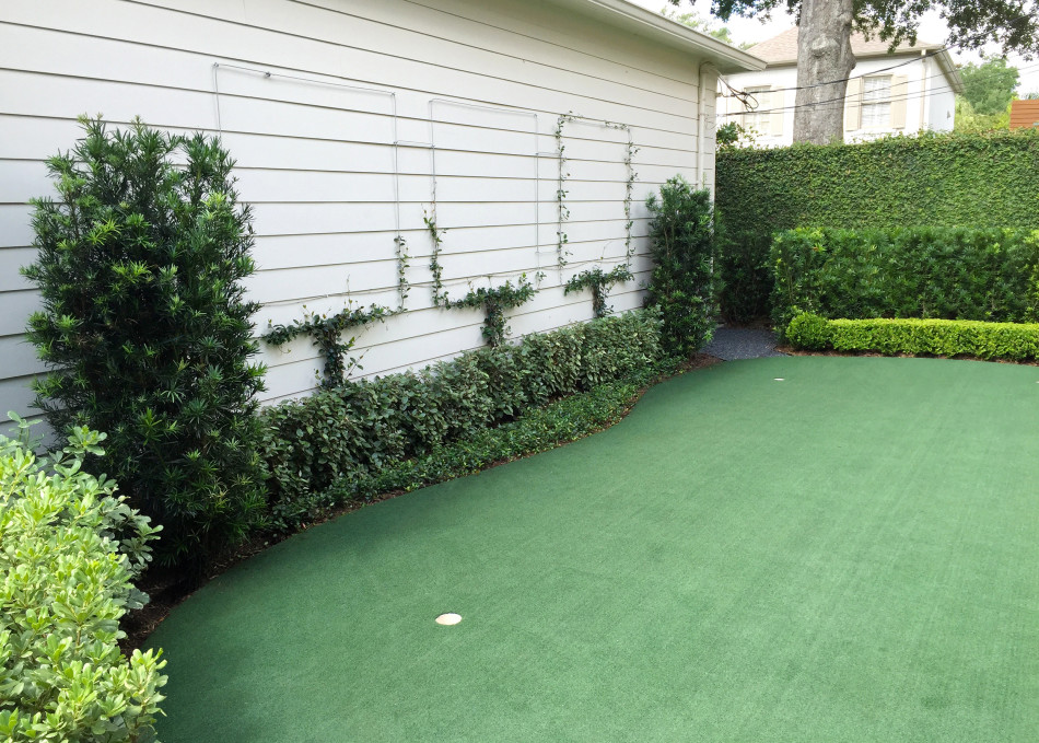 Left:  Confederate Jasmine growing on a three-square pattern cable to resemble a pollarded tree grove.