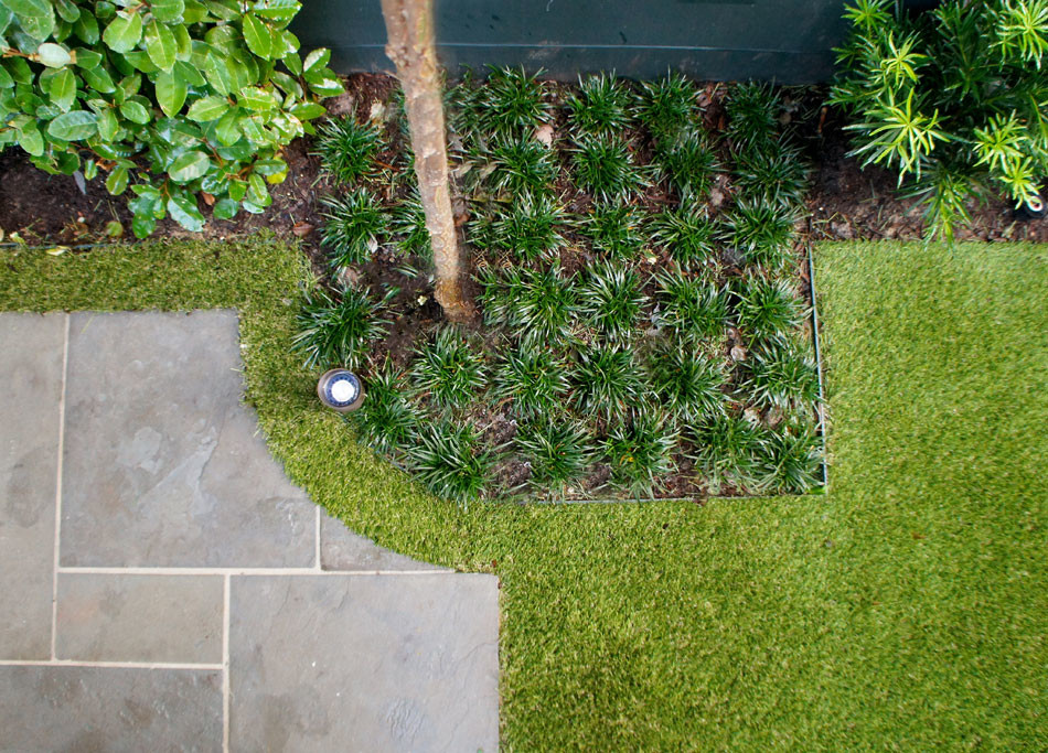 "Synthetic lawn follows the scalloped corner of the patio creating a shapely, ""floating"" effect and Dwarf Monkey Grass surrounds the four corners for added texture."