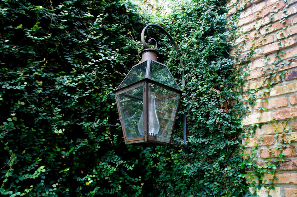 Beautiful Bevolo French Quarter lantern with scroll is immersed in the soft Fig Ivy.
