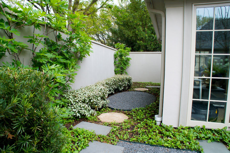 Stepping pads and gravel paths lead to the back side yard. Sandy Leaf Fig Ivy serves as ground cover throughout.
