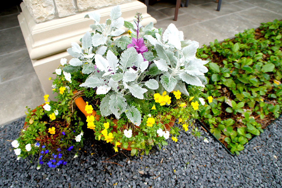 Dusty Miller with an array of seasonal color adds visual interest to this otherwise monochromatic courtyard.