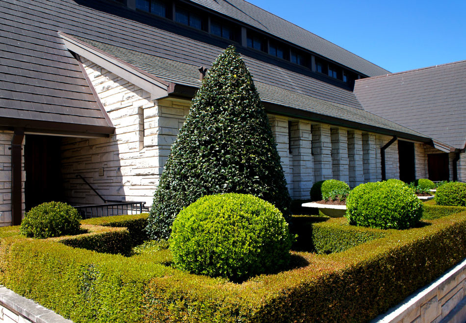 Geometric boxwood hedges are anchored with boxwood globes and a large, cone-shaped Oakleaf Holly.