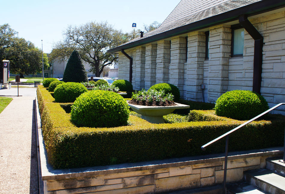 Geometric boxwood hedges are anchored with boxwood globes and serve to frame color planters along the outer walls of the church.