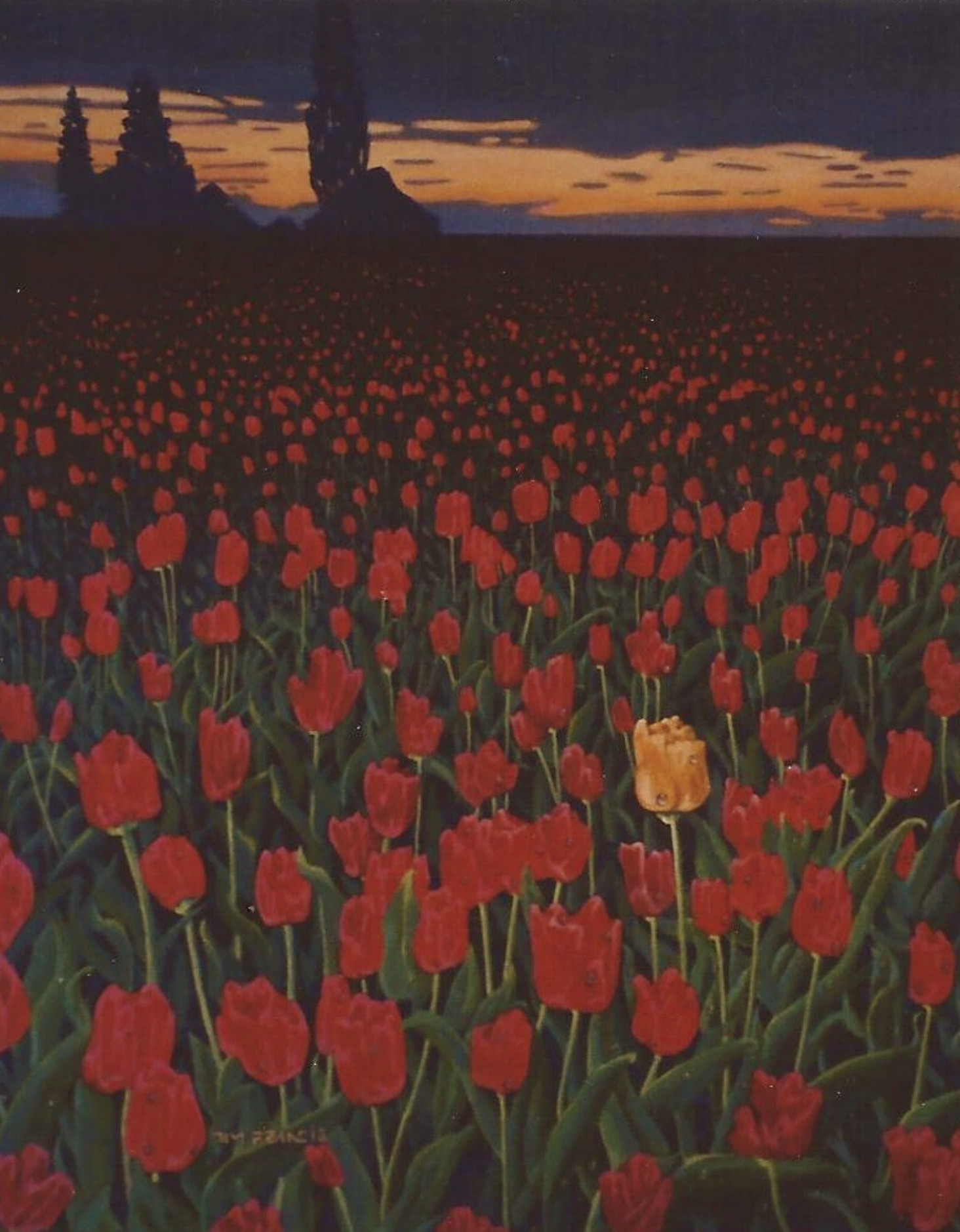 "yellow tulip - 1999, Acrylic on canvas, 16x20"" Private collection, Vancouver, BC"