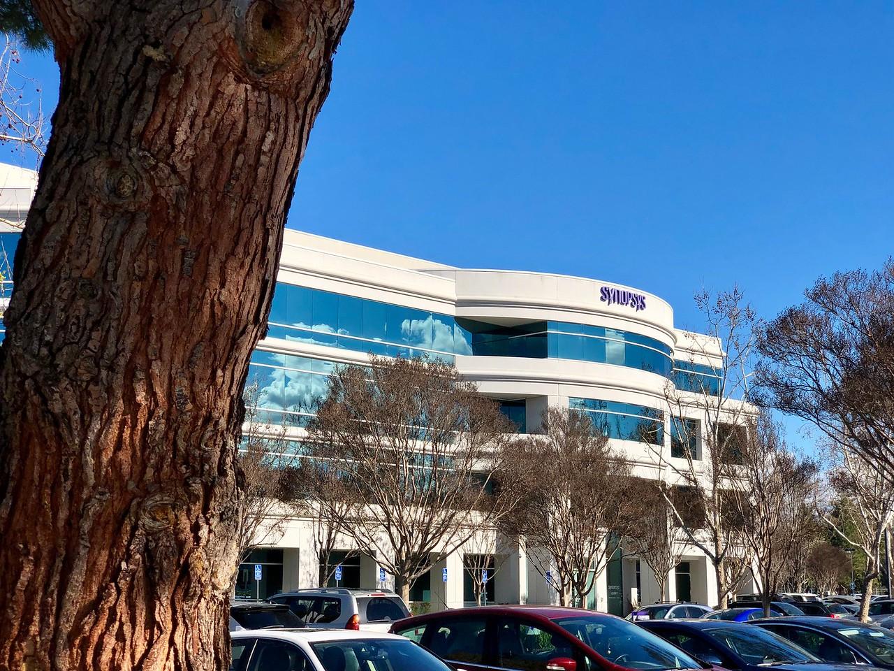 Synopsys Tech Company Sunnyvale Blu Skye Media-X2.jpg