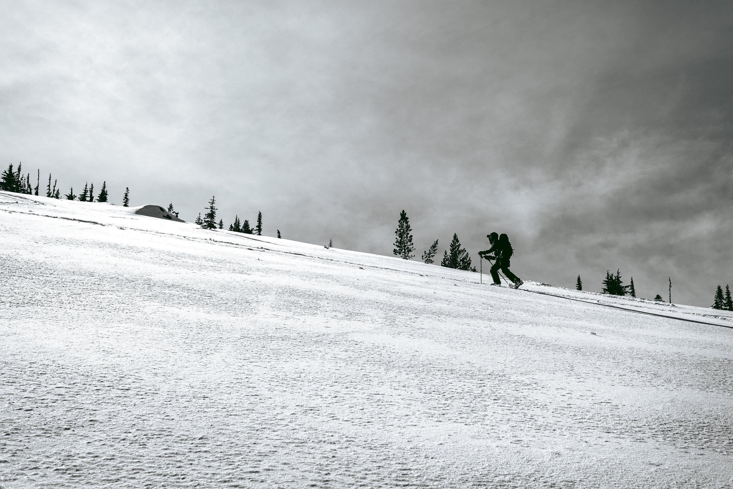 skitouring_zoa.jpg