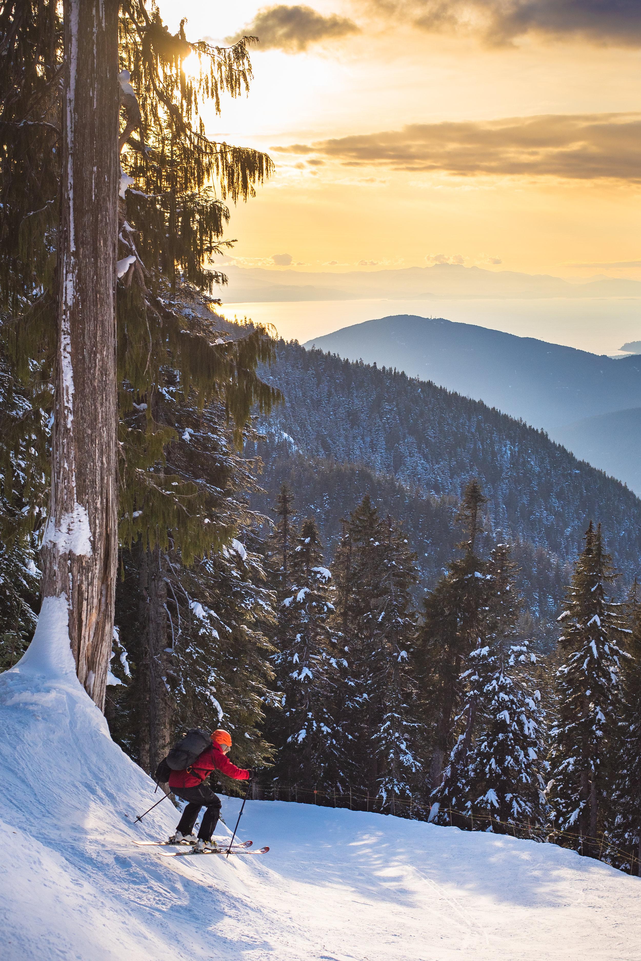 vin_skiing.jpg