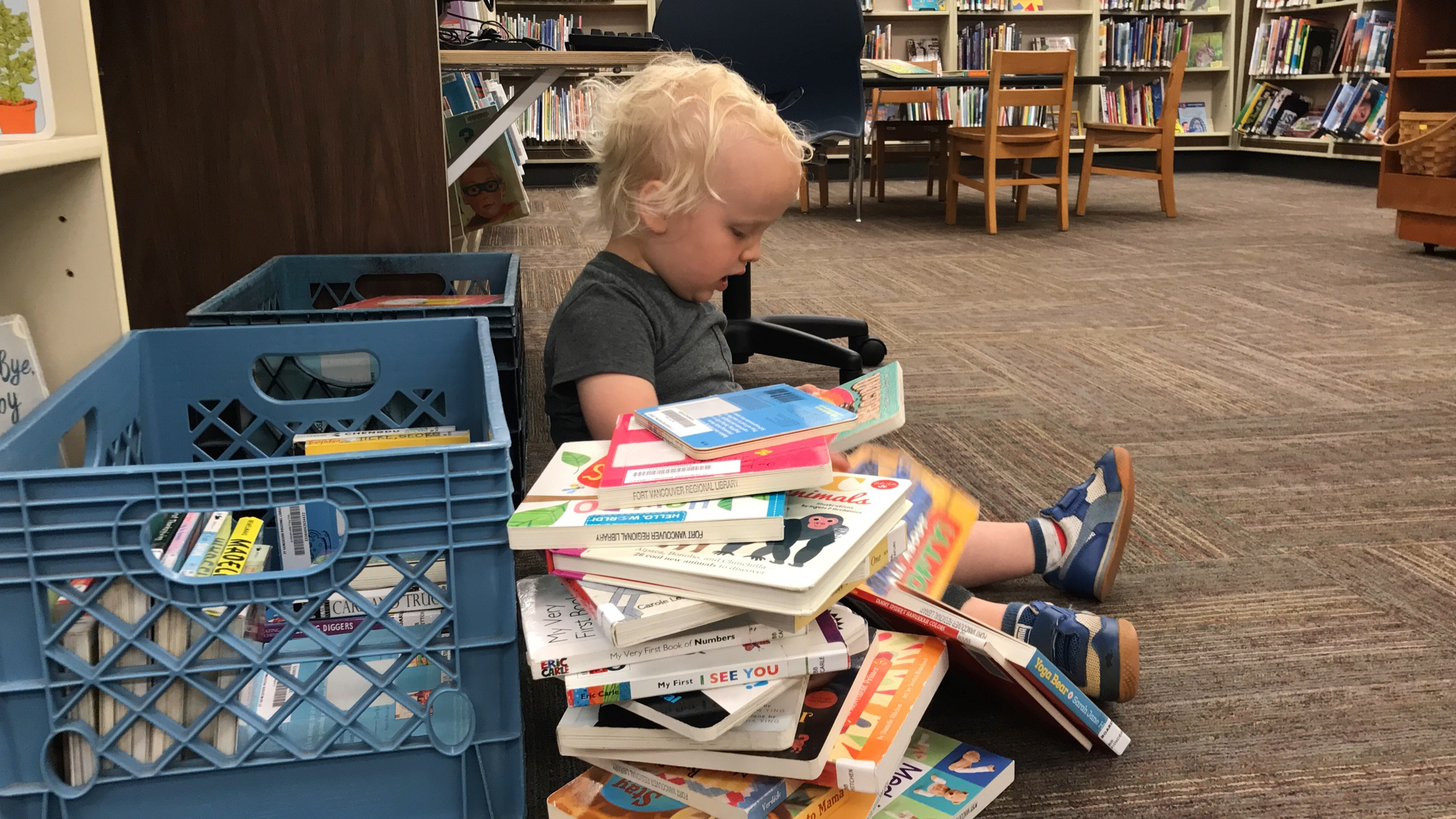 A toddler-age boy reads next to a giant stack of books in the Washougal Library.