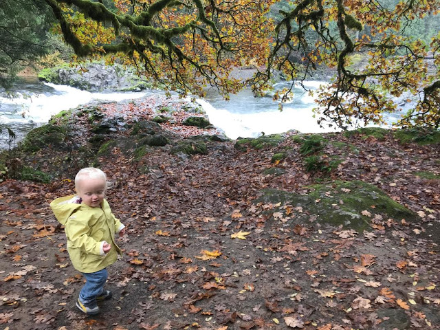 Toddler-age boy hiking by waterfall in the wilderness