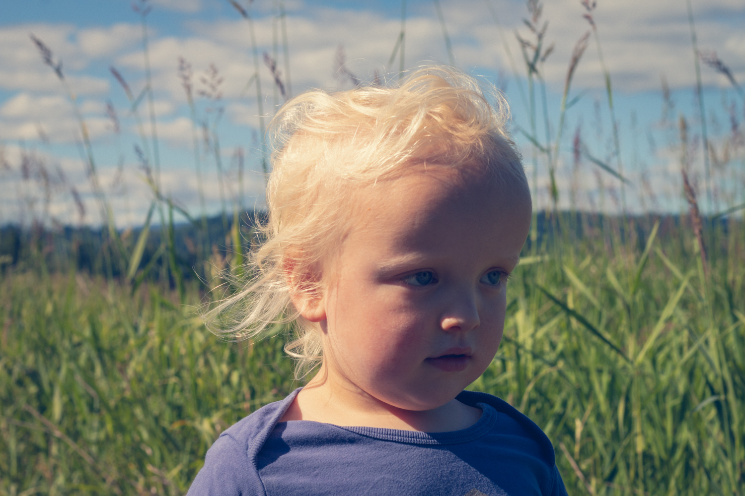 Toddler-age boy standing in the wilderness 06/19