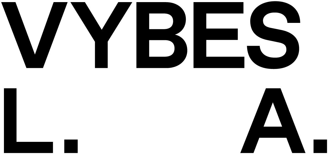 VYBES_LA_Black-1.png
